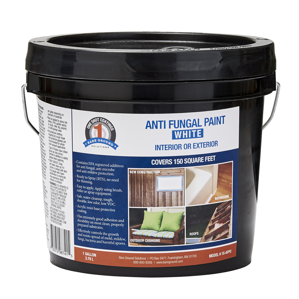 One Shot Anti-Fungal Paint - White