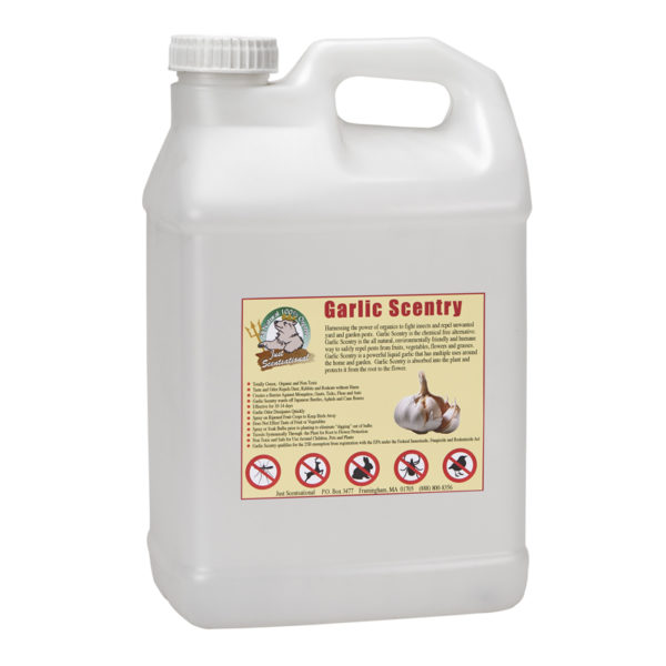 Just Scentsational Garlic Scentry - 2.5 Gallon