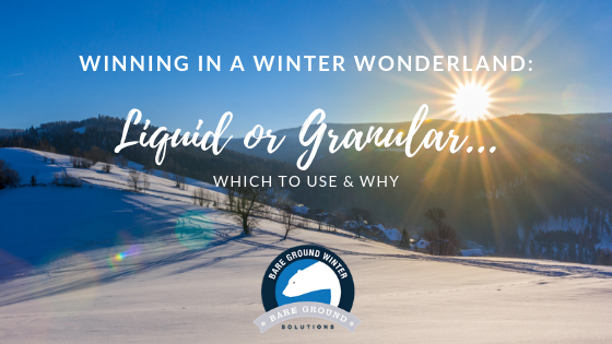 Winning in a winter wonderland_ Liquid or Granular