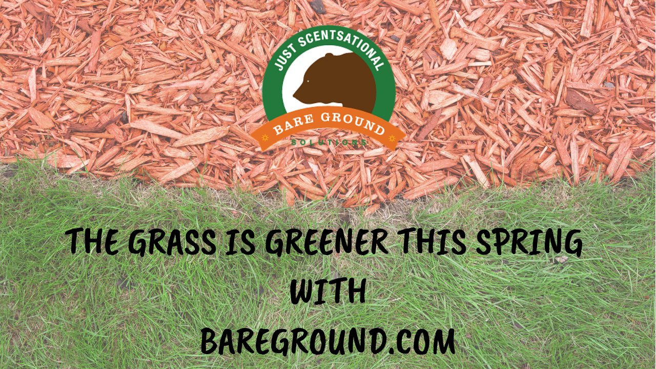 The Grass is greener - Bare Ground